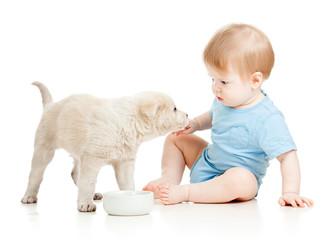 cute baby boy looking at puppy