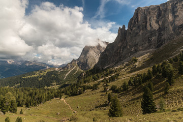 walking track across forested slope in Dolomites