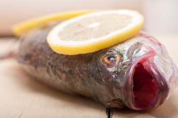 fresh whole raw fish