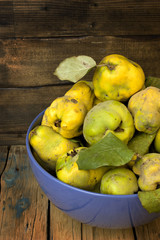 Plucked from the tree quince.
