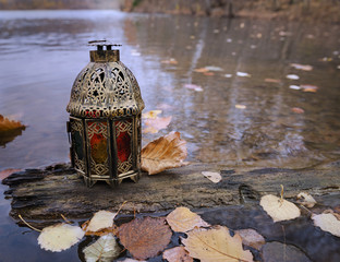 Vintage lantern on the old tree with fallen leaves