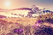 magical mountains landscape