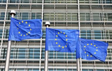 flags of European Union at European Commission