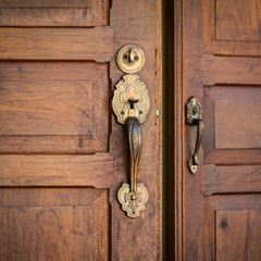 Door Brass Handles and Wooden Close-up