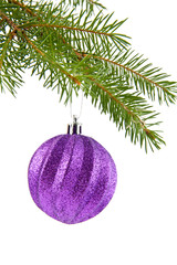 branch of fir-tree and ball