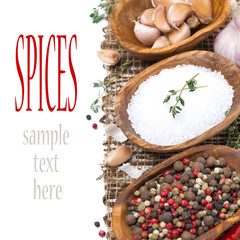 sea salt, hot pepper and spices in bowls isolated