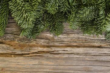 """Hintergrund """"Altes Holz mit Tannengrün"""""""