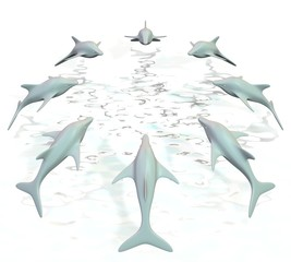 Dolfijnen springen in cirkel uit het water