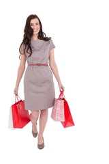 Elegant brunette with shopping bags