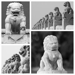 chinese lions sculptures collage, Beijing, China