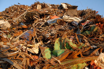 Garbage pile in harbour