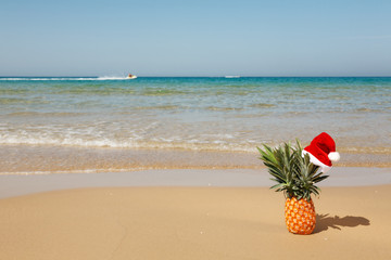 Pineapple at santa hat .