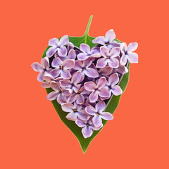 Leaves and petals lilac heart shaped (Valentine's Day, February