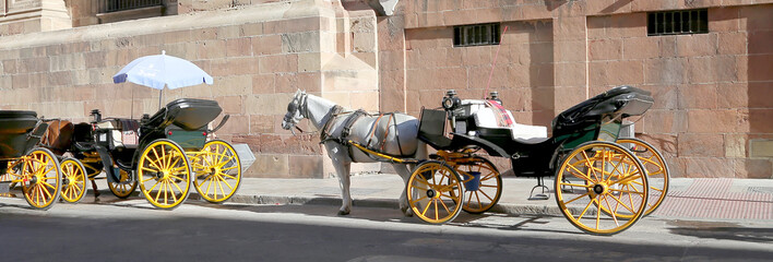 Carriage waiting for passengers in Malaga,Spain