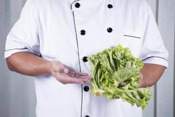 Chef holds lettuce