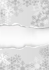 Silver christmas background with torn paper