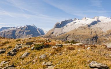 Riederalp, Moosfluh, Fusshörner, Aletsch, Alpen, Schweiz
