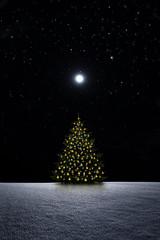 Christbaum bei Nacht