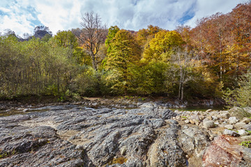 mountain stream hardened lava