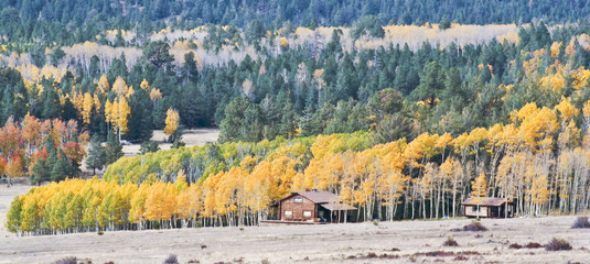 A Pair of Mountain Cabins in the Fall