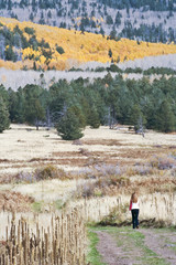 A Woman Strolls Through Fall Scenery in the San Francisco Mounta