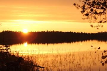 рассвет на лесном озере