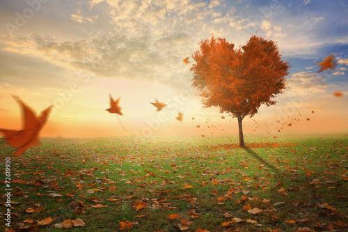 Leinwanddruck Bild Heart shaped tree during fall
