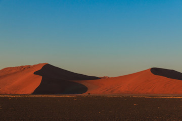 Mighty red sanddune sunset Sossusvlei