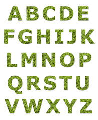 green upper case letter