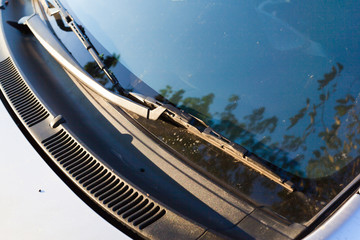 windshield wipers for cars