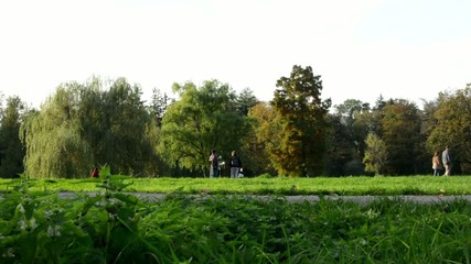 Autumn park (trees) - people walking - grass