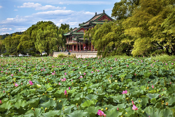 Red Pavilion Lotus Garden Summer Palace Park Beijing China