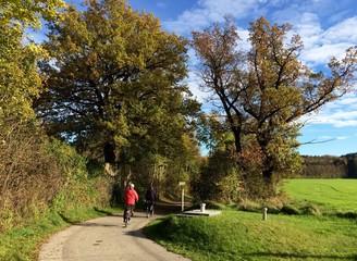 Radfahren im sonnigen goldenen Herbst
