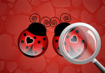Two ladybugs with heart