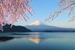 Leinwandbild Motiv Mount Fuji, view from Lake Kawaguchiko