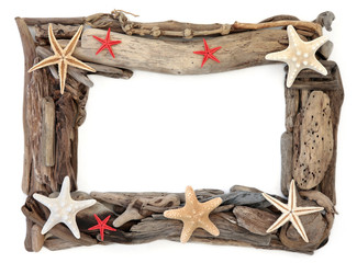 Driftwood and Starfish Frame