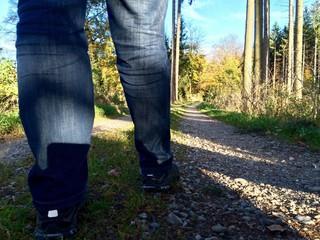 Wandern durch den Herbstwald