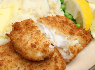 Breaded Haddock Fish Fillets
