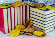 Herbst-Bibliothek