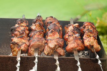 Appetizing fresh meat shish kebab (shashlik)