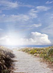 Sunlight shining at beach