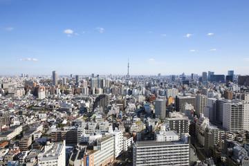 東京スカイツリー 都心の街並