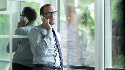 Handsome businessman talking on cellphone, standing by the windo