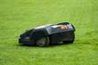 Lawn Mower Robot - 72650916
