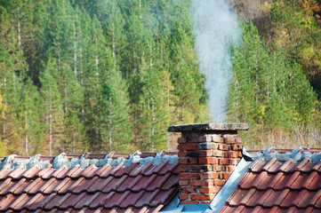 Smoking chimney at forest background