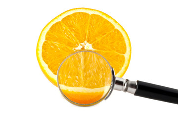 orange and a magnifying glass