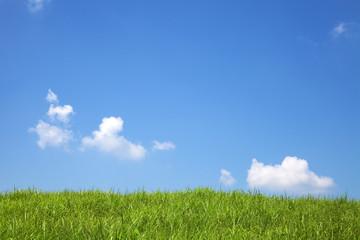 夏の曽爾高原