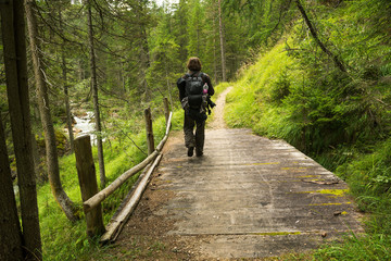 Man hiking in the forest on the bridge