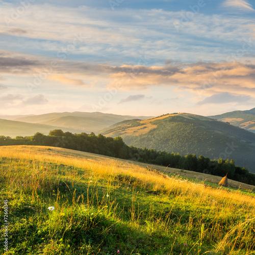 field on hillside near village © Pellinni