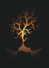 albero al buio